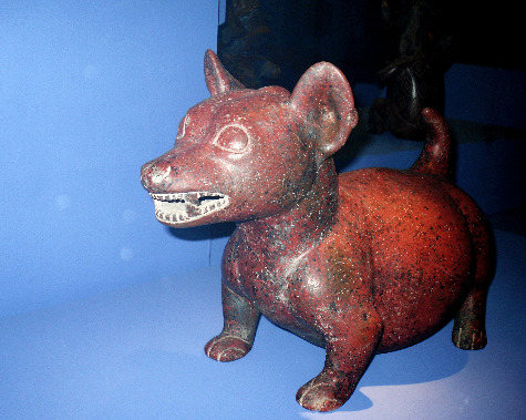 Fat Chihuahua art statue by Bandit In The Night